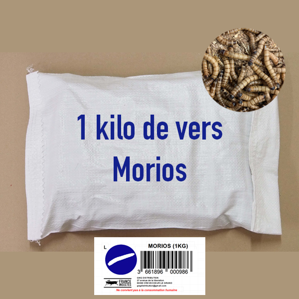 MORIOS AU KILO