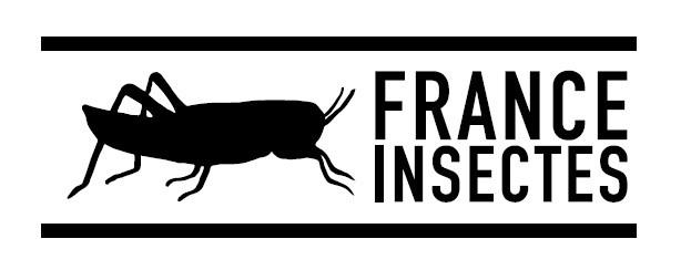 France-Insectes.com